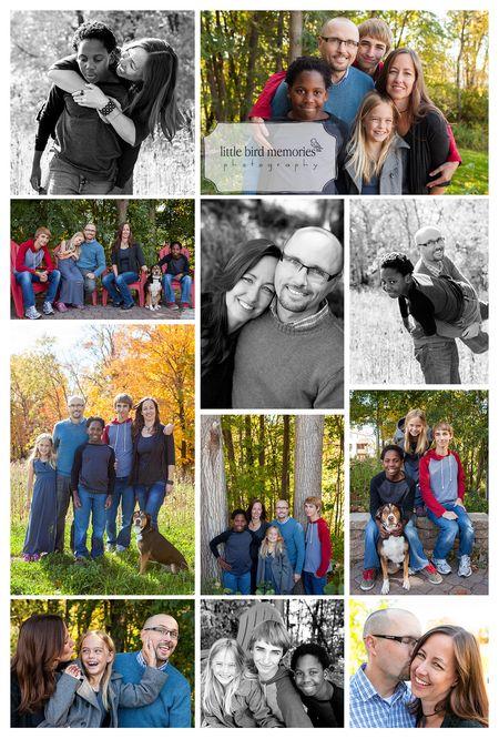 Castors_collage